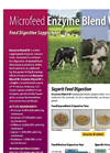 Feed Supplement Enzymes Enhanc Brochure