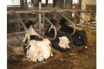 Animattress - Livestock Mattress Systems