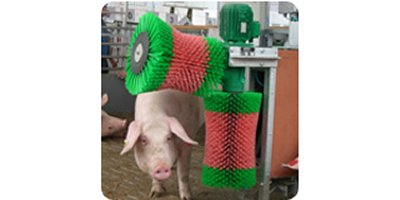 Schurr - Sows and Pigs Automatic System