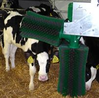 Schurr - 2-Brush-System for Calves