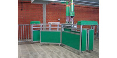 Electronic Sow Feeding System