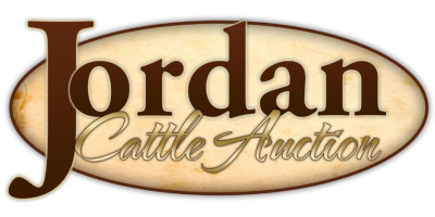 Jordan Cattle Auction