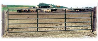 RanchMasterT - Model 2 - Cattle Gate