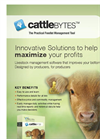 CattleBytes - Feedlot Management Software Brochure