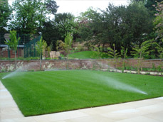 Lawn Irrigation & Grass Irrigation Service