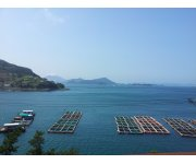 COFI 32 Concludes, Discusses Aquaculture and Blue Growth