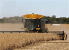 Lexion - Model 700 Series - Combines