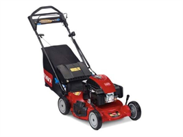 Toro - Model 21 in. Personal Pace® Spin Stop™ (20383) - Walk Power Mowers