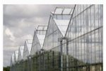 WIDESPAN  - Model A - Frame Greenhouses
