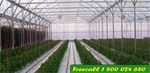 Redpath  - Model 9200FI - Supertwin Greenhouse