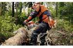 STIHL - Petrol Chain Saws for Forestry
