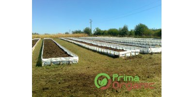 Prima - Propagating Material Organic Fertilizer
