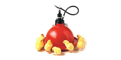 Plasson - Poultry Drinkers for Broilers