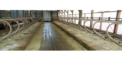 Mat-Mate - Dairy Farms Using Rubber Mats