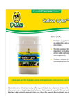 Calva Lyte - Electrolytes Brochure