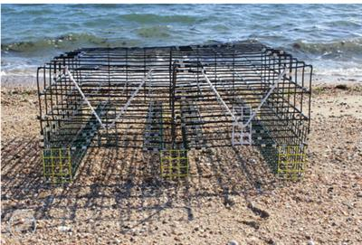 Oyster - Model NA_5 - Bottom Cages
