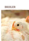 Broiler  Brochure