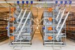 Transit Multi-Tier System for Hygienic, Efficient and Successful Broiler Growing
