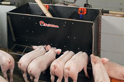MultiMax - For Piglet Rearing