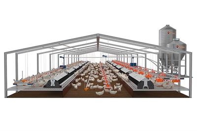 broiler pan feeding Equipment | Agriculture XPRT