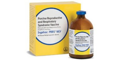 Ingelvac  - Model MLV - Porcine Reproductive and Respiratory Syndrome (PRRS)
