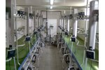 Panorama Classic - Fish Bone Type Milking Parlours