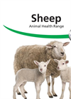 Sheep Animal Health Range Brochure