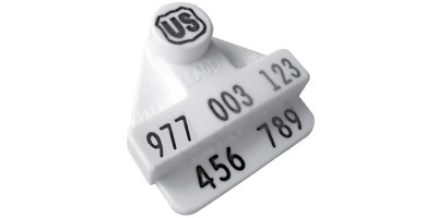 Electronic Identification Cattle Tags