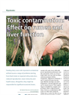 Toxic Contamination : Effect on the Rumen and the Liver Brochure