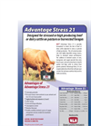 HLS - Model 21 - Advantage Stress Datasheet