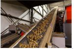 Vertical and Horizontal Transport Conveyors