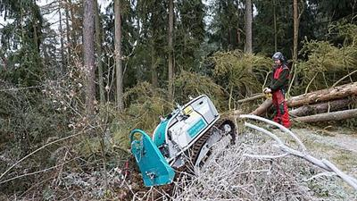 Moritz - Model Fr50 - Mini Felling Tractor