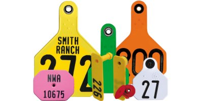 American - Visual ID Tags