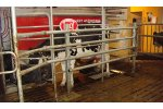 Bovibooster - Model BBPB AT - Automatic Hoof Washing System
