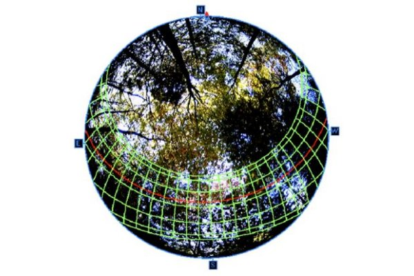 Forest Canopy Image Analysis System-2