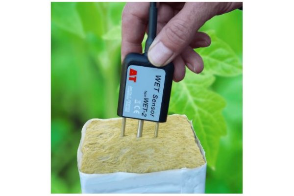 Irrigation Research WET Sensor-4