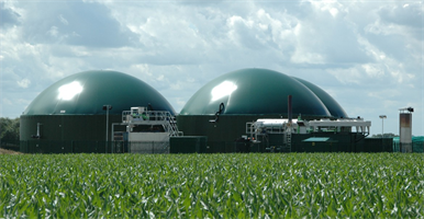 HoSt - Farm Scale Biogas Plants