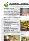 Tazas General Catalog