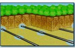 ROOTGUARD - Subsurface Drip Irrigation
