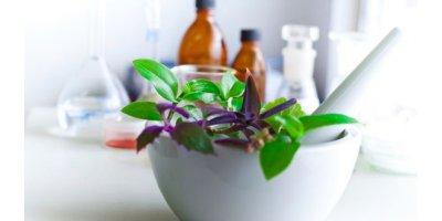 Bioactive Health & Wellness