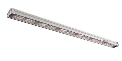 2-Channel LED Lights