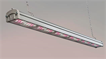 Valoya - High Light Intensity Multilayer and Moving Systems