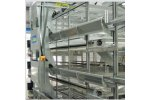 Stacked Pullet Cages