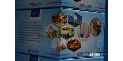 REAGEN - Model RNM98007 - Aflatoxin B1 ELISA Test Kit