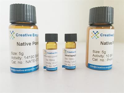 Native Bovine Catalase - Chemical & Pharmaceuticals