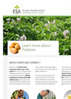 ESA_16.0120 Potatoes Factsheet - Brochure