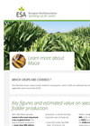 ESA_16.0118 Maize Factsheet Brochure