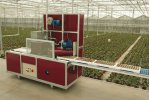 Model TVE - Tray and Boxfilling Machine