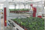Potting Robot Machine