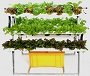 M&F - Model DH-A48 - Hydroponic system for rooftop